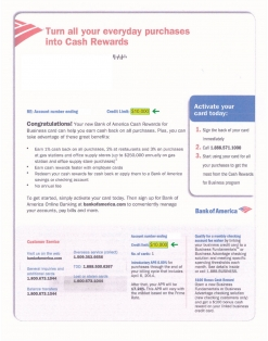 $10,000 BANK OF AMERICA APPROVAL