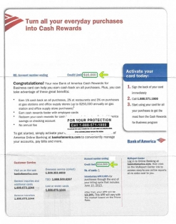 $16,000 BANK OF AMERICA APPROVAL